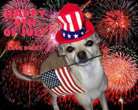 July 4th And Your Pets