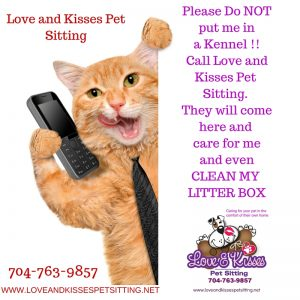 Cat Sitter and Dog Walker in Unionville NC