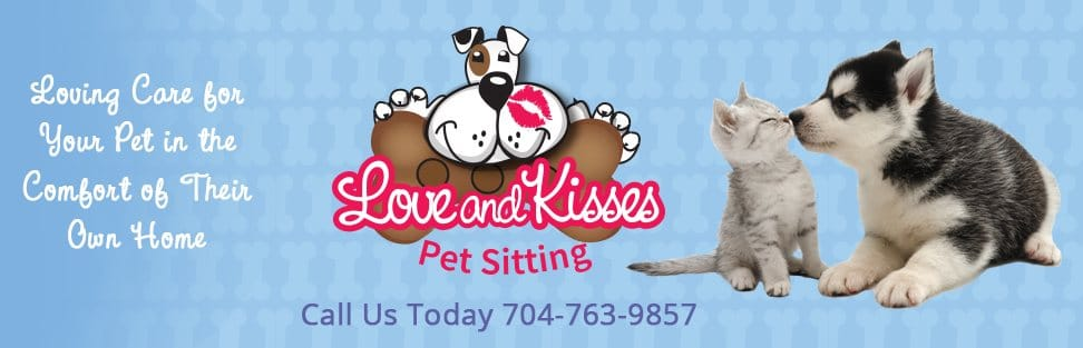 Pet Sitter | Dog Walker | Cat Sitter | Indian Trail