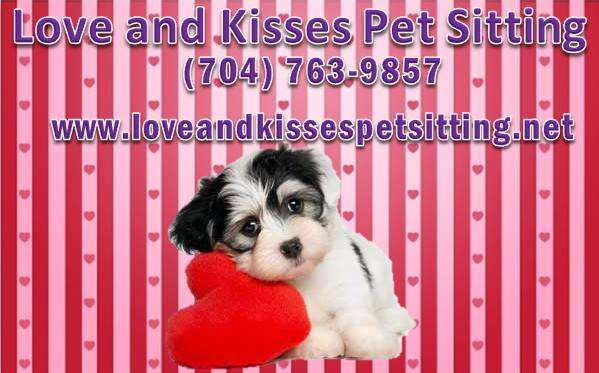It S National Professional Pet Sitters Week March 2nd To