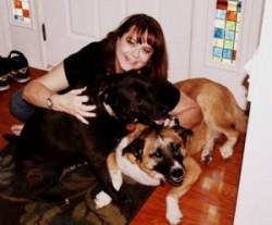 dog boarding in south charlotte love and kisses pet sitting nc. Black Bedroom Furniture Sets. Home Design Ideas
