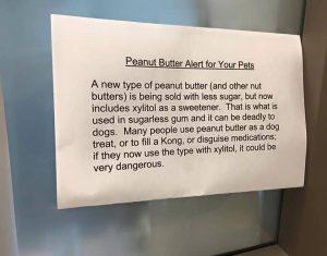 Peanut Butter Can Kill My Dog?