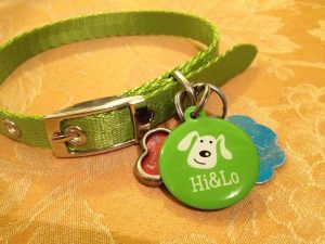 New State Of The Art Dog Tag For Your Pets Pet Sitter