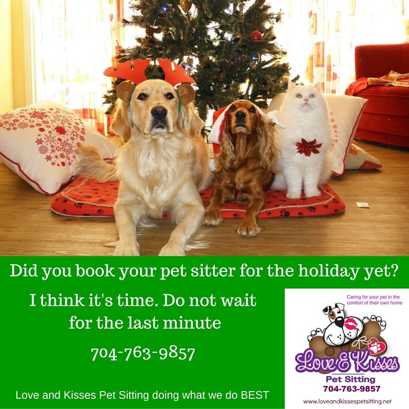 Gifts For Dogs - Love and Kisses Pet Sitting, NC