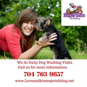 Town of Unionville Pet Sitting and Dog walking