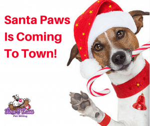 Christmas Gifts For Dogs - Love and Kisses Pet Sitting, NC